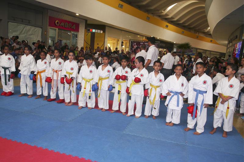 Karate Do 2