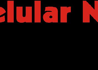 CELULAR NET